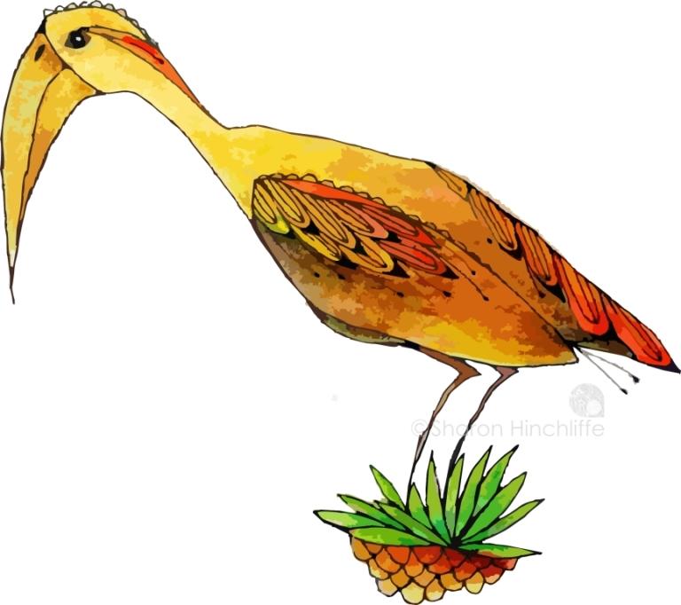 13bird4a