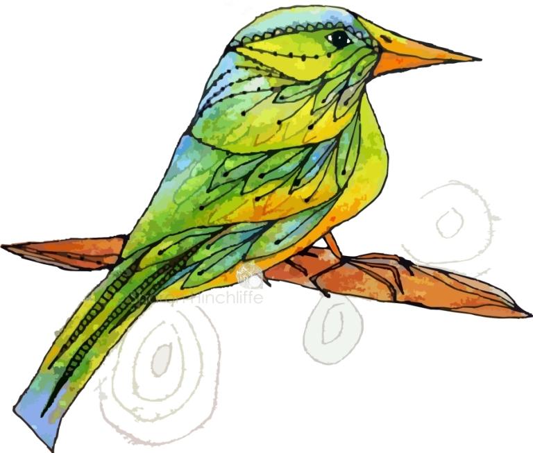 13bird7a